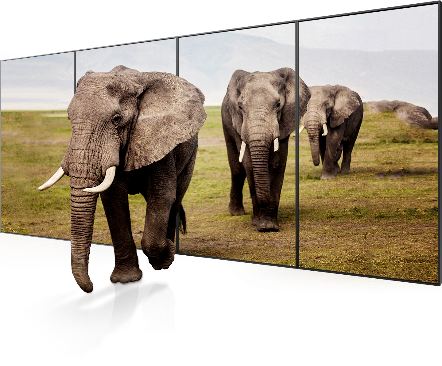 The Best LCD Panel