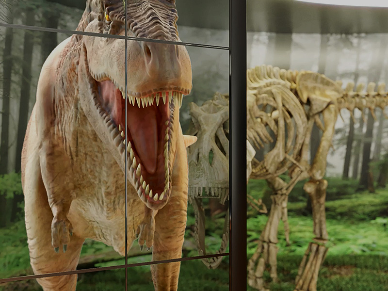 A lifelike imagery displayed on the screen overlaid with the dinosaur bones exhibited in the museum.